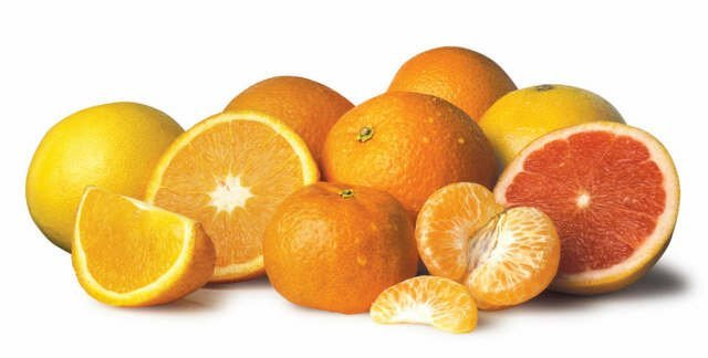 Citrus fruits (free clip art)